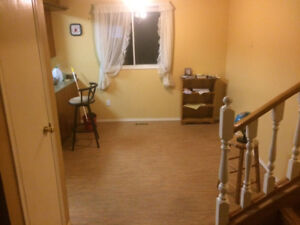 Spacious suite for rent St Paul Ab