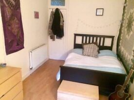 Nice single room in fully redecorated house.