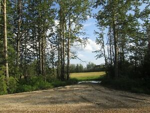 4 Acre Parcel Close to Drayton Valley!