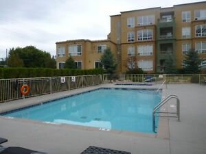 2 Bedroom Condo-One Minute Walk to the Beach!