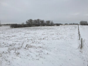 19 Acres of Serviced Land Waiting for Your Dream Home!