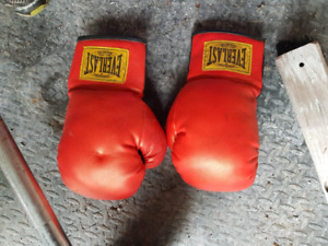 Everlast and Century boxing gloves $15obo each $20 for both.