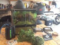 """18"""" Exo-terra front opening enclosure with locking mesh top"""