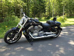 v-rod muscle harley