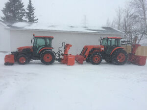SNOW REMOVAL---RIVERVIEW