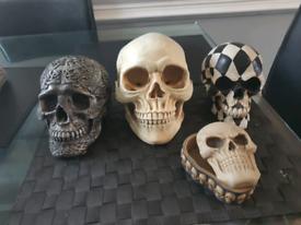 Skulls for sale