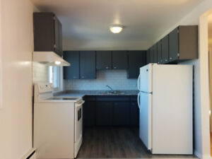 3 Bedroom Apartment for Rent Across the Street From Algoma U