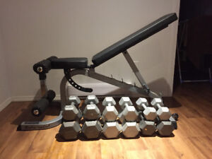weight bench with dumbbells