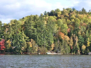 Canadian waterfront paradise (Lake McGregor,Gatineau)