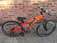 Child's trek precaliber mountain bike