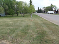Residential Lot in Stirling, Alberta