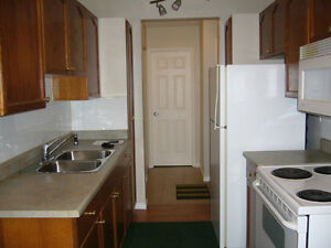 Downtown/Oliver One Bedroom Condo for Rent
