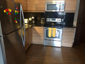 Newly Renovated One Bedroom Downtown Apartment