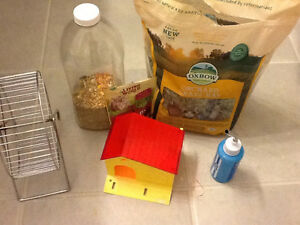 A female hamster, cage and accessories Stratford Kitchener Area image 2