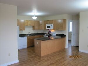 Cozy and bright 2 bedroom suite with 6 appliances and parking.