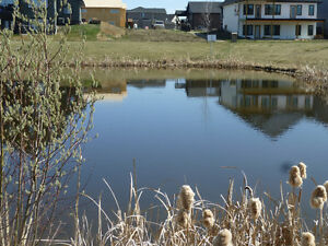 Beautiful lot on lake at Southbridge Crossing, Calmar