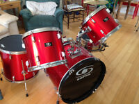 """Drums! perfect for beginners. Comes with 'Mutes"""""""