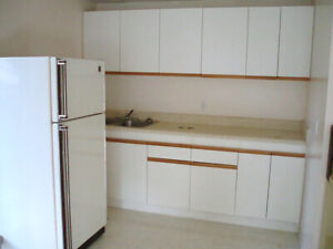 Recently Renovated 1-Bedroom Apartment for Rent
