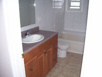 Seeking Male roommate for current 9-5 tenant, now until Spring