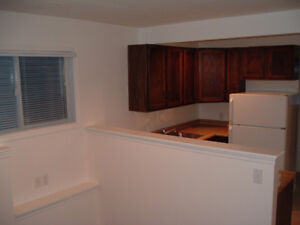 Walkout lower level suite for rent  McKenzie Lake $900 incl util