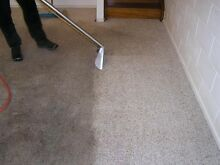Carpet Cleaning / Tile and grout Cleaning (BRASCLEANING) Manly Area Preview