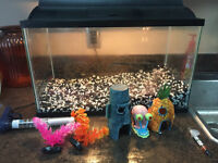 Fish Tank with ALL Accessories!
