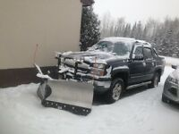 Snow Removals Plow, Snowblower, Shovel - Ice Control