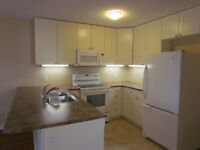 3 Bedroom Courtice Apartment - All Inclusive - With Garage Use