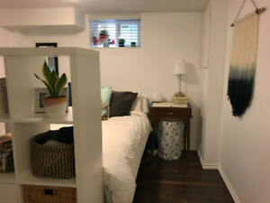 Renovated Junction Basement Apartment