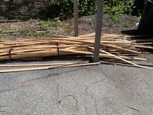 Free Saw Dust and Fire Wood