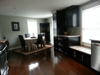 Bright 3 story downtown house for vacation or exective rental