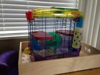 FREE gerbils and cage