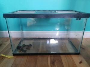 Terrarium aquarium