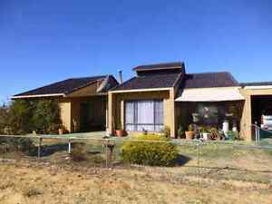 Farm and Home on 2600 acres Kalannie Dalwallinu Area Preview