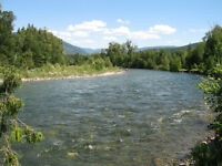 Fly Fishing Paradise on the Shuswap River