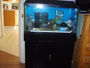 Aquarium 25 gallon with accessories