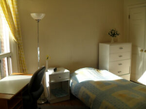Furnished Room from August for MALE only INTERNATIONAL Student