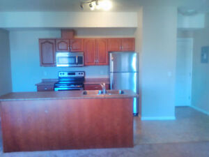 Brand new 4 bedroom in Downtown available now