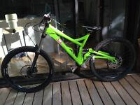Iron Horse Downhill Bike