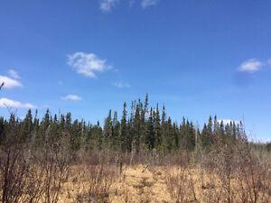 37 Acre Lot Timmins Borders Crown Land Lake! Northern Ontario!