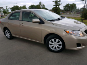 Magnificent 2009 Toyota Corolla * low km*