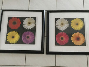 Set of framed floral pictures - 20 inches square - free