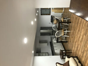 one person basement apartment for rent in Binbrook