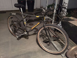 Old GT Timberline Mountain Bike