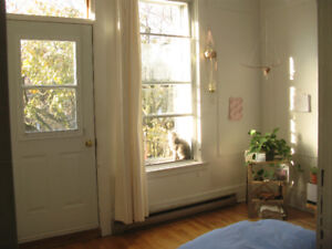 $420 Outremont/Mile End room in 6 1/2 Jan1 - May1 sublet