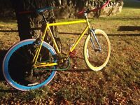 2015 Custom Mango singles speed bike,