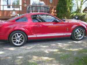 2008 Ford Mustang Shelby Coupe (2 door) Kawartha Lakes Peterborough Area image 8