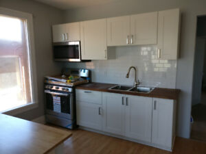 Newly renovated 2BR apartment on Locke St. for rent immediately
