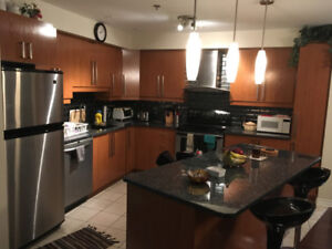 $1800 / 3br - Beautiful Apartment Condo available for Rent NDG