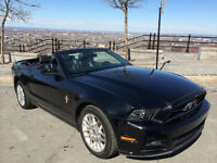 2013 Ford Mustang Convertible Premium Pony Package Convertible
